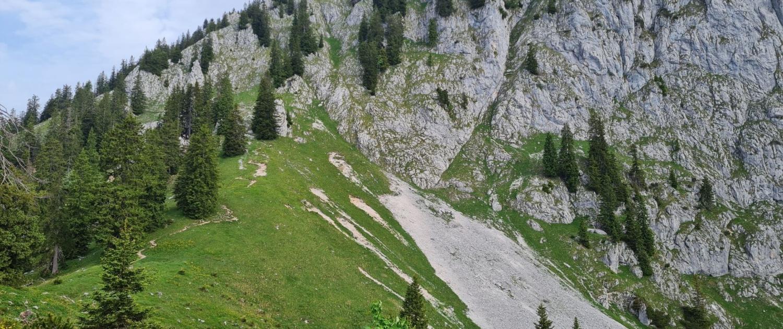 Wanderung auf die Benediktenwand - Aufstieg Altweibersteig