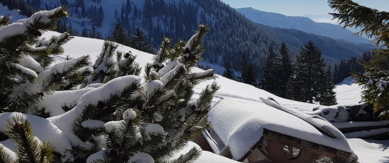 Mit Schneeschuhen auf den Jägerkamp: Obere Schönfeldalm