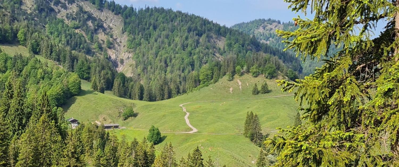 Wanderung Schildenstein - Königsalm