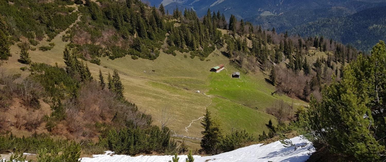 Wanderung auf den Schinder - Abstieg übers Schneefeld zur Trausnitzalm