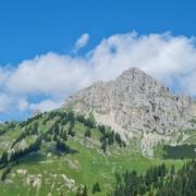 Wanderung zur Schneetalalm - Blick auf Köllenspitze