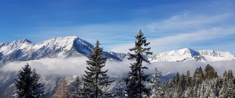 Blick auf Seekarspitze